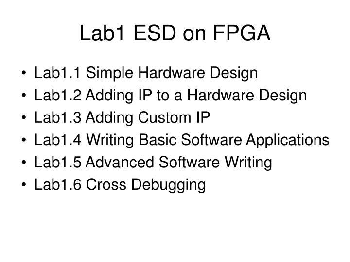 Lab1 ESD on FPGA