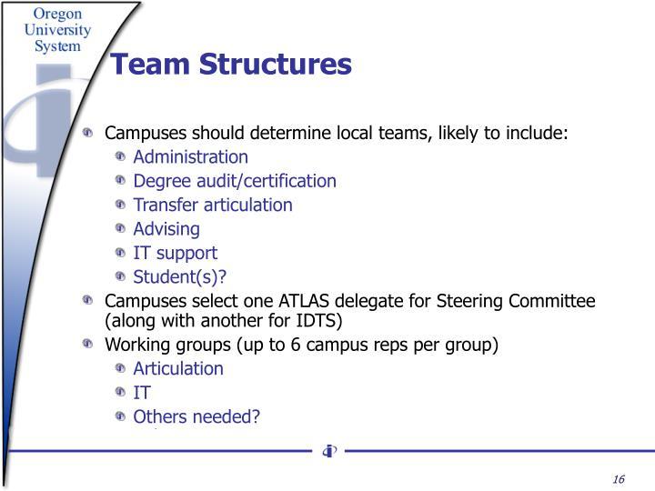 Team Structures