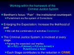 working within the framework of the criminal justice system