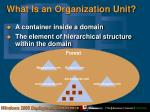 what is an organization unit