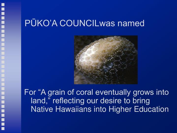 PŪKO'A COUNCILwas named
