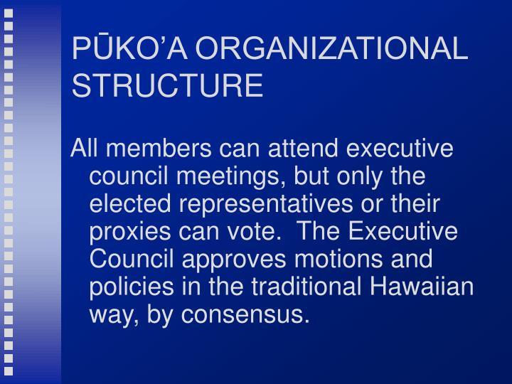 PŪKO'A ORGANIZATIONAL STRUCTURE