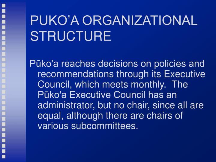 PUKO'A ORGANIZATIONAL STRUCTURE