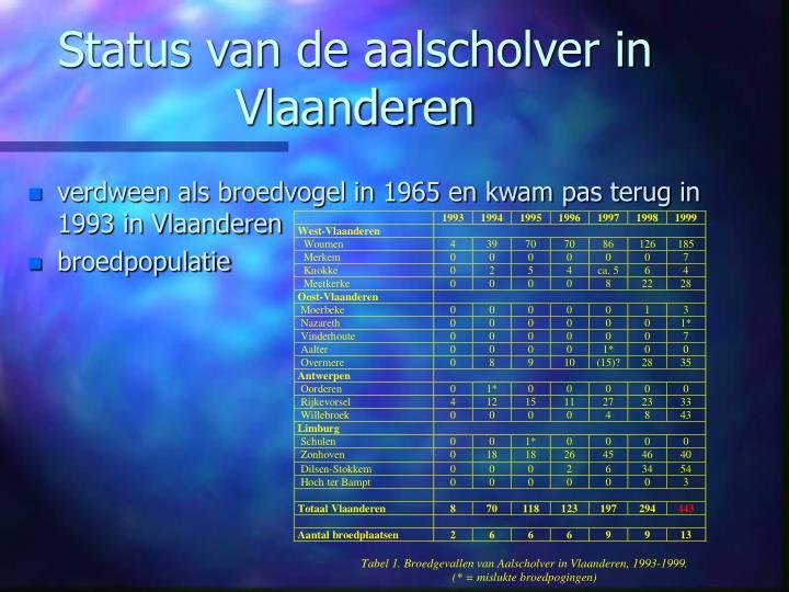 Status van de aalscholver in Vlaanderen