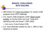 brazil challenge wto ruling