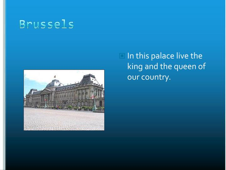 In this palace live the king and the queen of our country.
