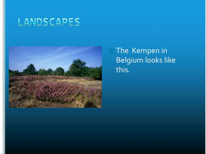 The  Kempen in Belgium looks like this.