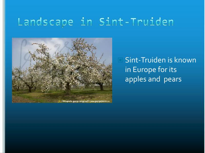 Sint-Truiden is known in Europe for its apples and  pears