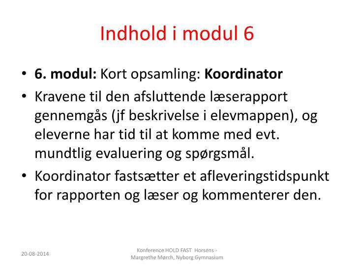 Indhold i modul 6