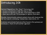 introducing jcr