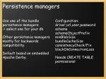 persistence managers