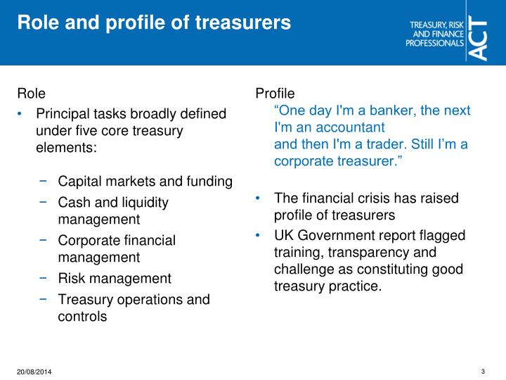 Role and profile of treasurers