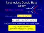 neutrinoless double beta decay