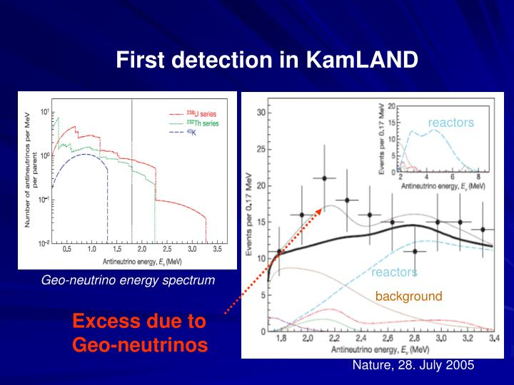 First detection in KamLAND