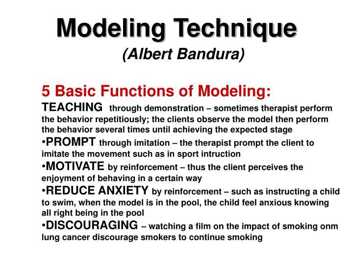 Modeling Technique