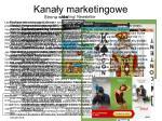 kana y marketingowe2