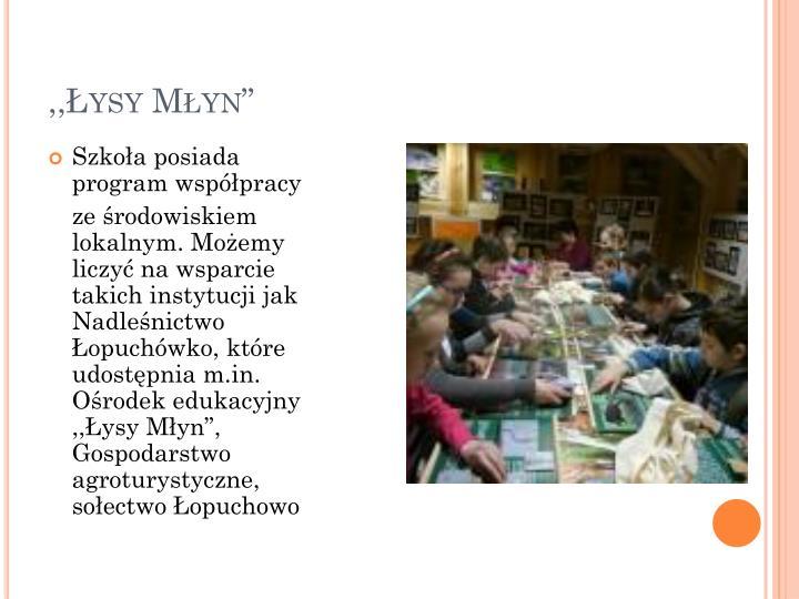 """,,Łysy Młyn"""""""