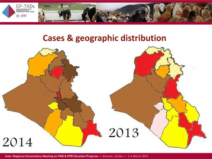 Cases geographic distribution