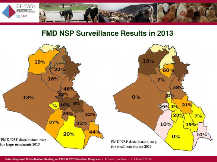 FMD NSP Surveillance Results in 2013