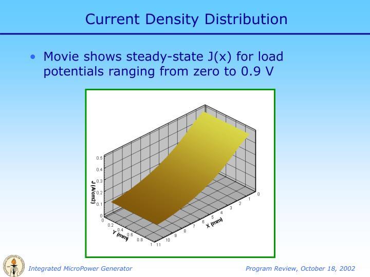 Current Density Distribution