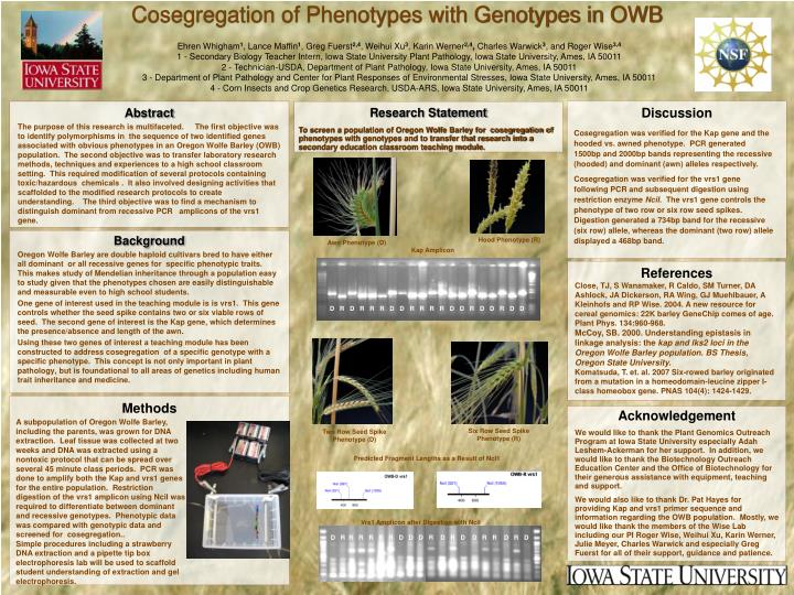 cosegregation of phenotypes with genotypes in owb