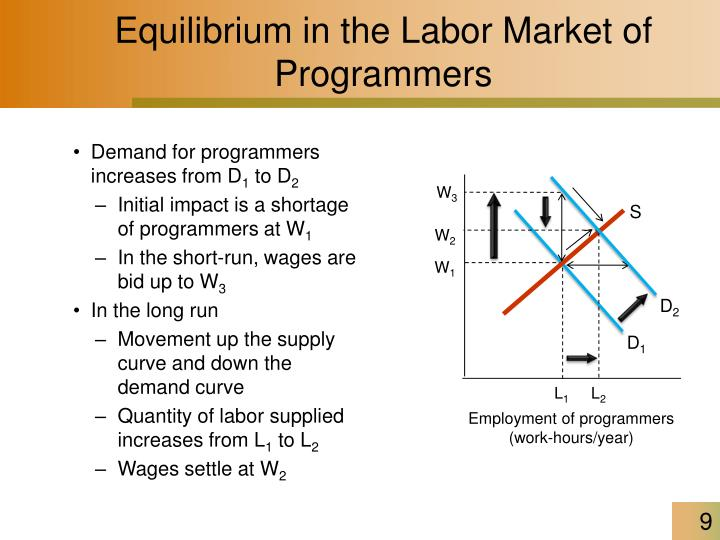 Equilibrium in the Labor Market of Programmers