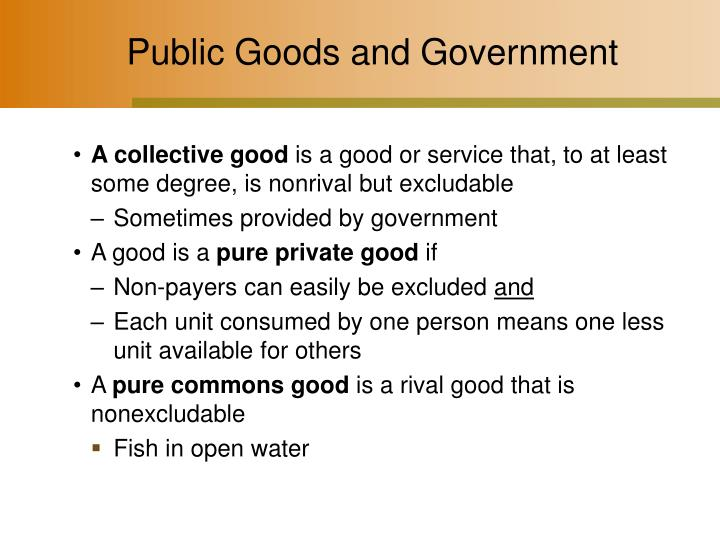 Public Goods and Government