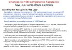 lead hse risk management hse lead