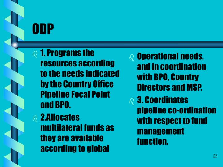 1. Programs the resources according to the needs indicated by the Country Office Pipeline Focal Point and BPO.
