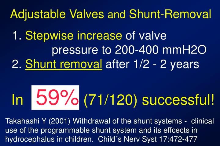 Adjustable Valves