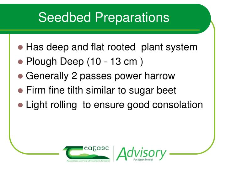 Seedbed Preparations