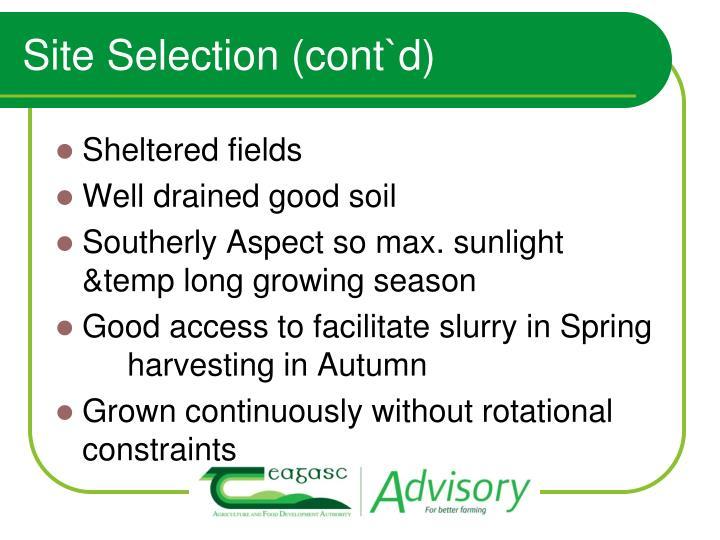 Site Selection (cont`d)