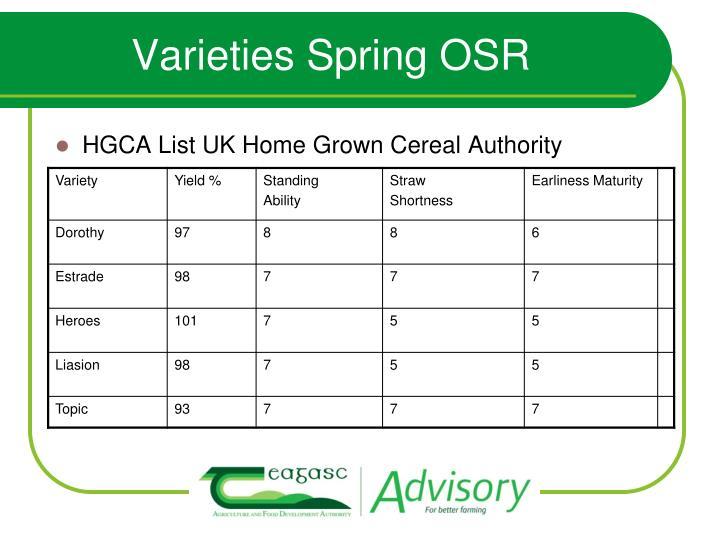 Varieties Spring OSR