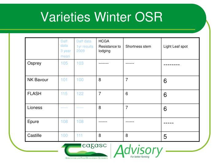 Varieties Winter OSR