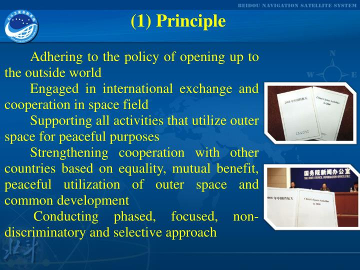 (1) Principle