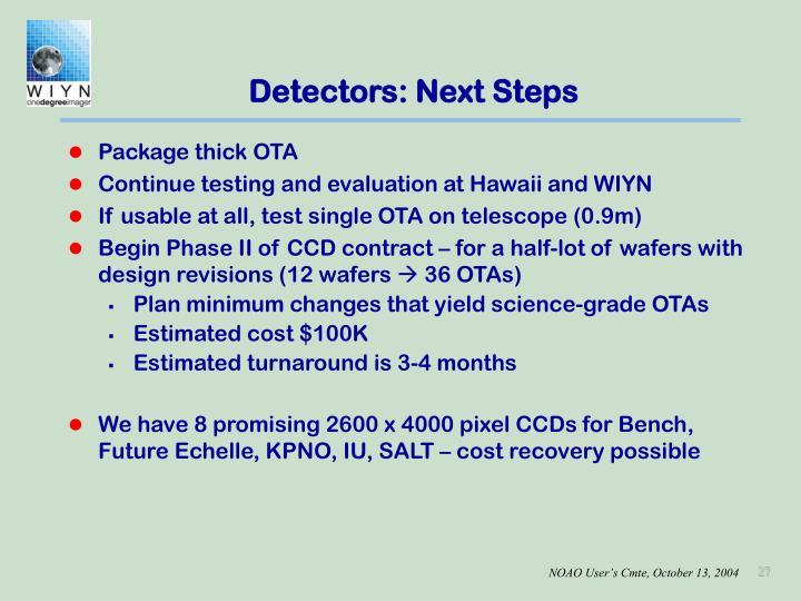 Detectors: Next Steps