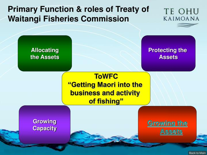 Primary Function & roles of Treaty of Waitangi Fisheries Commission