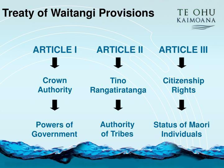 Treaty of Waitangi Provisions