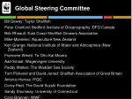 global steering committee