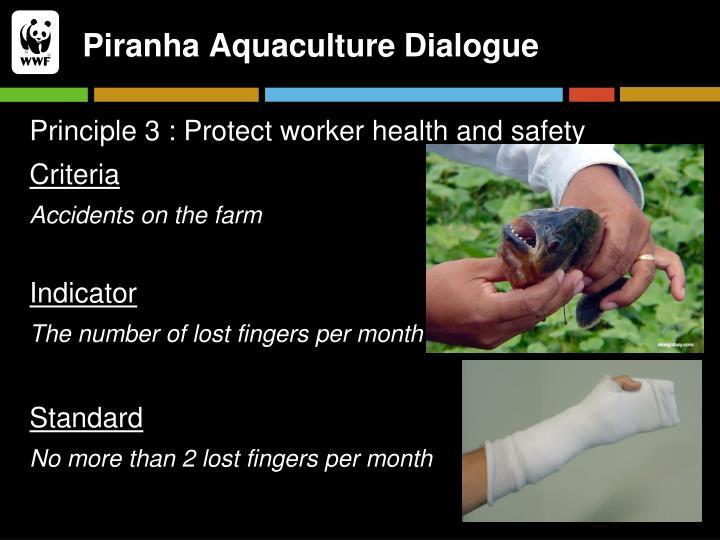 Piranha Aquaculture Dialogue