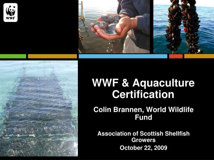 WWF & Aquaculture Certification
