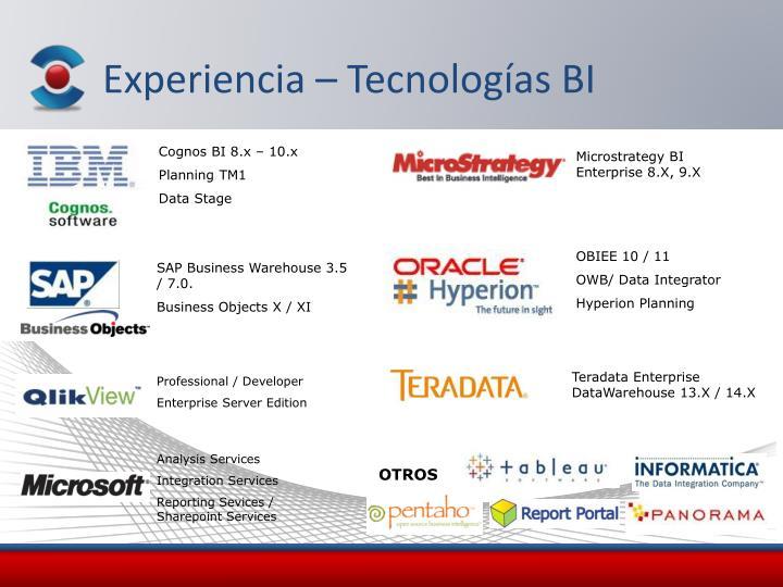 Experiencia – Tecnologías BI