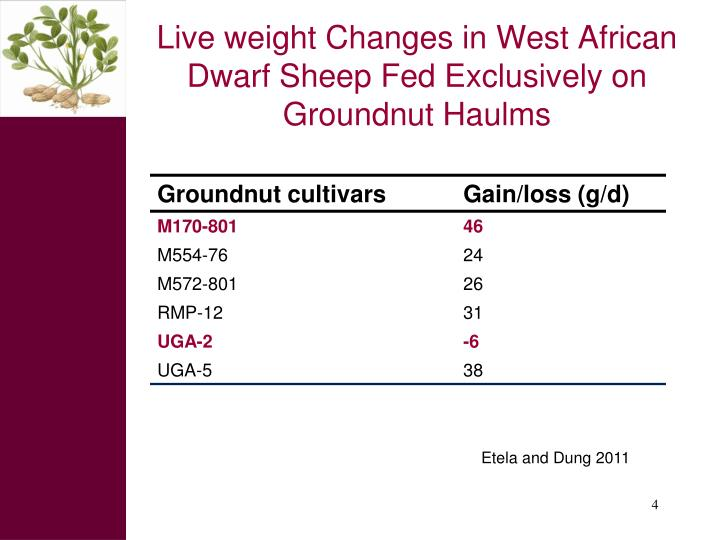 Live weight Changes in West African Dwarf Sheep Fed Exclusively on Groundnut Haulms