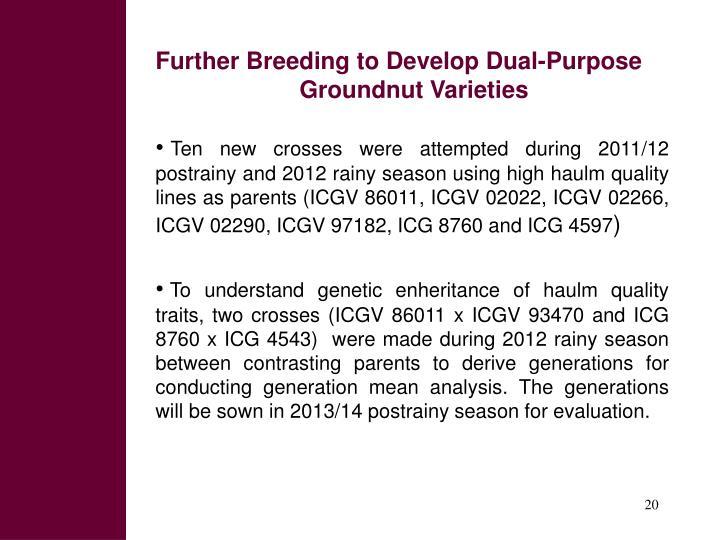 Further Breeding to Develop Dual-Purpose Groundnut Varieties