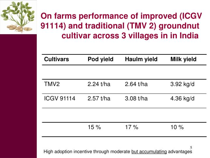 On farms performance of improved (ICGV 91114) and traditional (TMV 2) groundnut      cultivar across 3 villages in in India