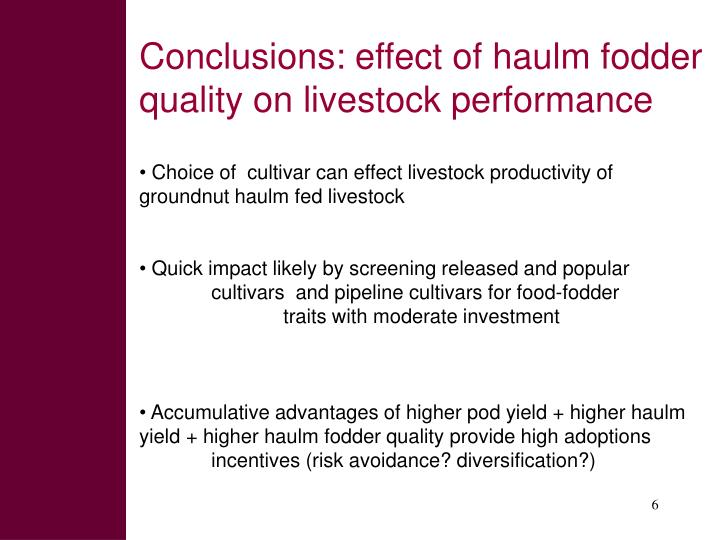 Conclusions: effect of haulm fodder