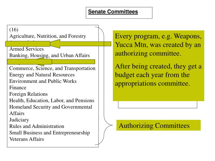 Authorizing Committees