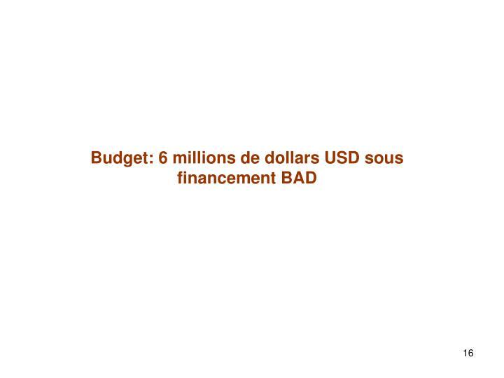Budget: 6 millions de dollars USD sous financement BAD