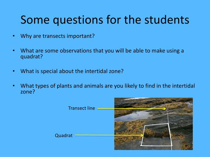Some questions for the students
