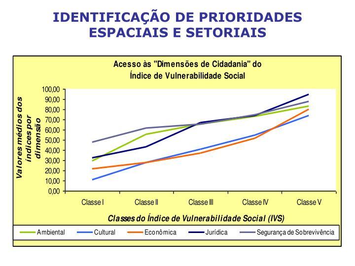 IDENTIFICAÇÃO DE PRIORIDADES ESPACIAIS E SETORIAIS